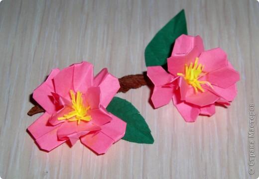3 день (вишни оригами)